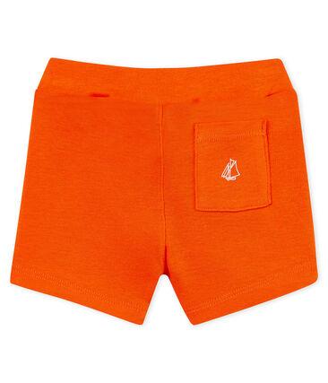 Baby boys' plain shorts