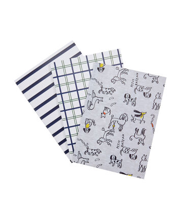 Set of three notebooks Poussiere grey / Multico white