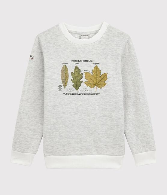 Petit Bateau x Deyrolle Boys' Sweatshirt Montelimar Chine grey