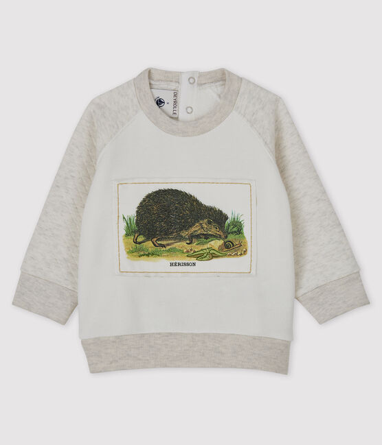 Baby Boys' Petit Bateau x Deyrolle Sweatshirt MARSHMALLOW/MONTELIMAR