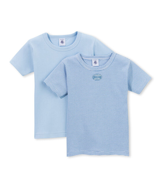 Lot de 2 t-shirts garçon rayés milleraies . set