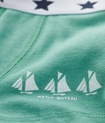 Boys' boxer shorts Aloevera green