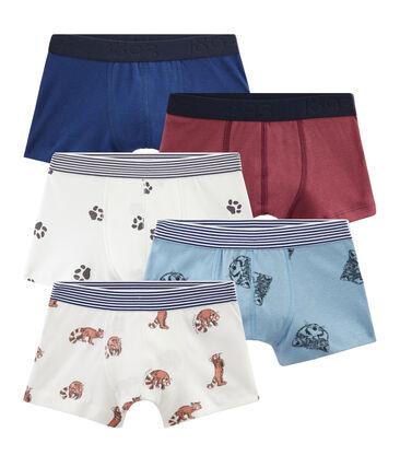 Boys' Boxers - 5-Piece Set