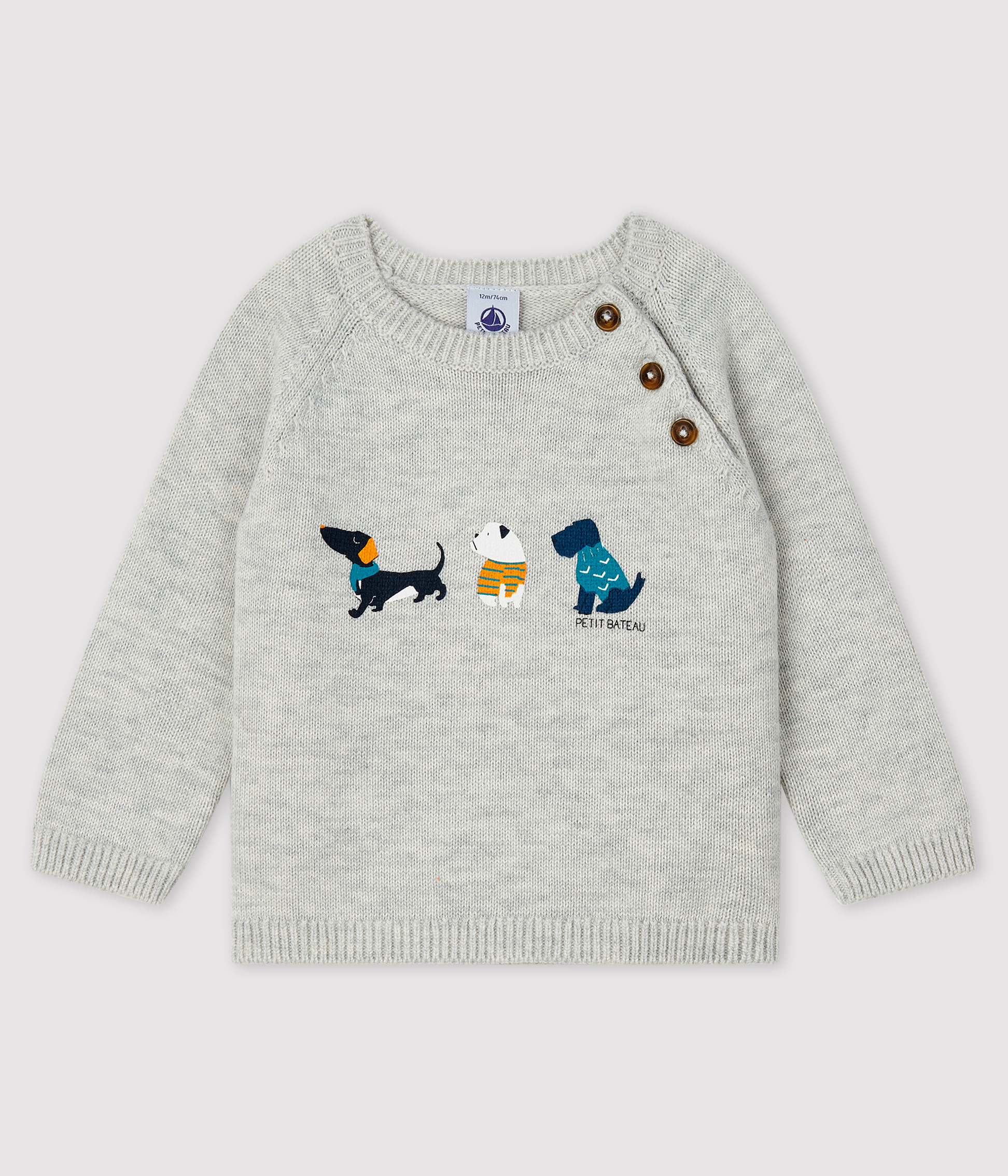 Baby boy's pullover with motif